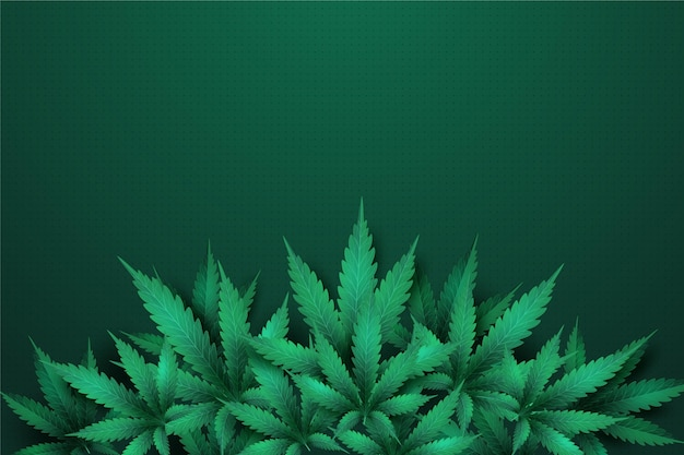 Fond de feuille de cannabis réaliste