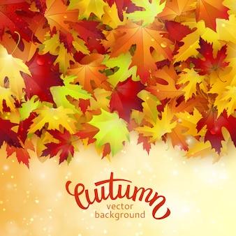 Fond avec des feuilles d'automne colorés
