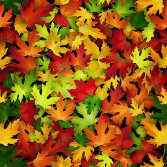 Fond avec des feuilles d'automne colorés.