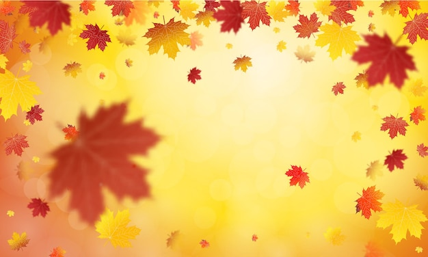 Fond de feuilles d'automne tombant