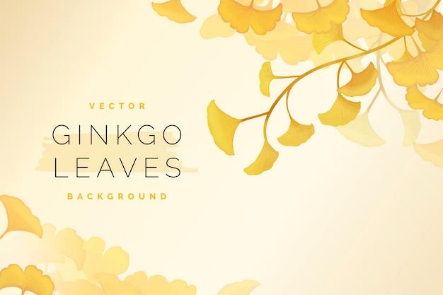Fond de feuilles de ginkgo