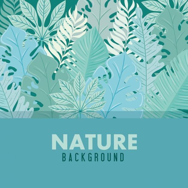 Fond, feuilles de nature tropicale avec couleur pastel