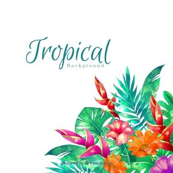 Fond de feuilles tropical aquarelle