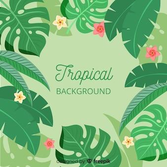 Fond de feuilles tropicales
