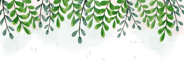 Fond de feuilles vertes suspendues