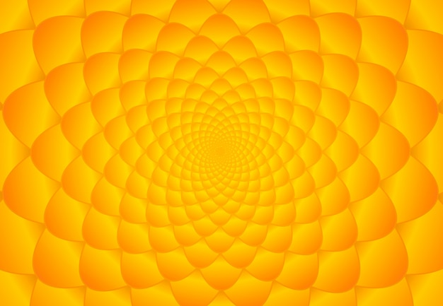 Fond de fibonacci orange et jaune