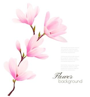 Fond de fleur avec branche de fleur de fleurs roses.