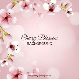 Fond de fleur de cerisier mignon