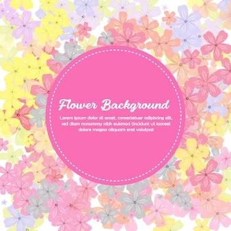Fond de fleur de printemps coloré