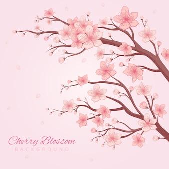 Fond de fleurs de cerisier dessiné à la main