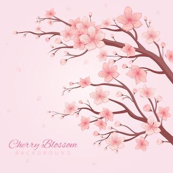 Fond de fleurs de cerisier dessinée à la main