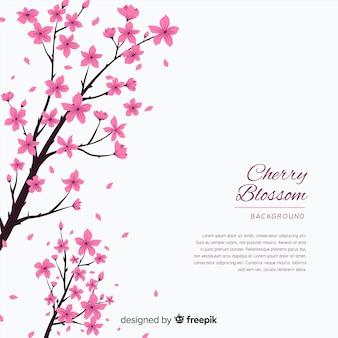 Fond de fleurs de cerisier dessinés à la main