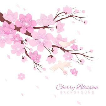 Fond de fleurs de cerisier