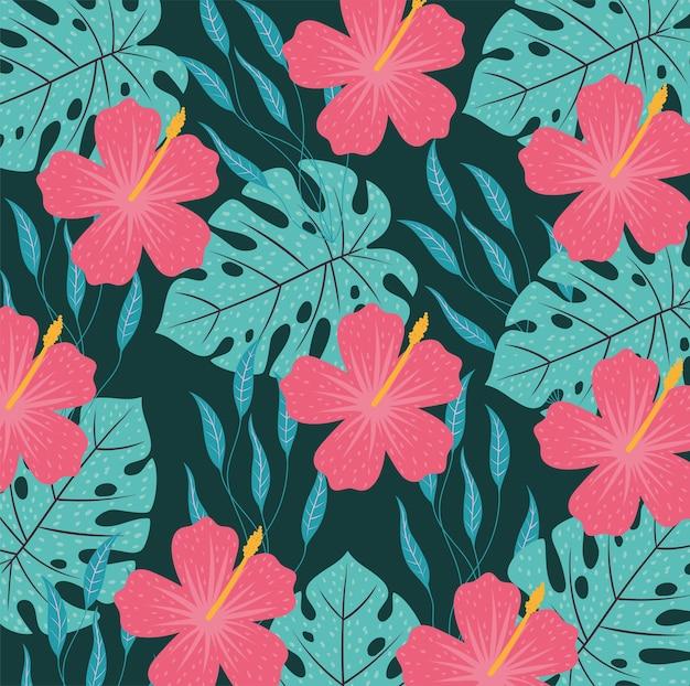 Fond de fleurs hawaïennes