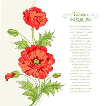 Fond de fleurs rouges