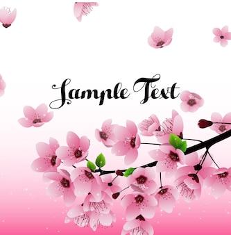Fond de fleurs de sakura avec champ pour le texte