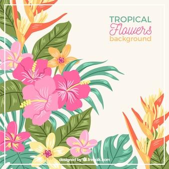 Fond de fleurs tropicales dessinées à la main