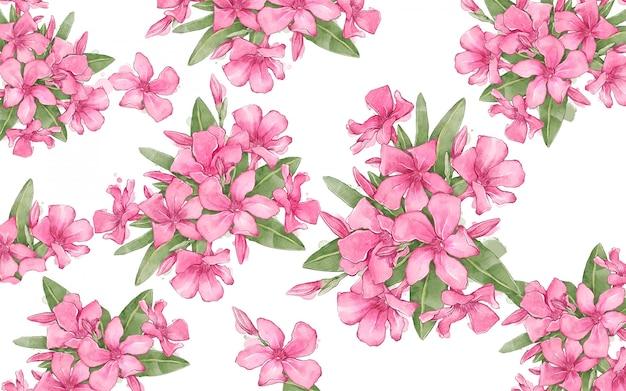 Fond floral avec composition de lauriers roses