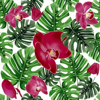 Fond floral de l'été. feuilles de palmiers tropicaux et fleur d'orchidées roses