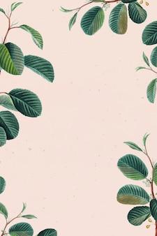 Fond floral de vecteur de cadre de feuille verte