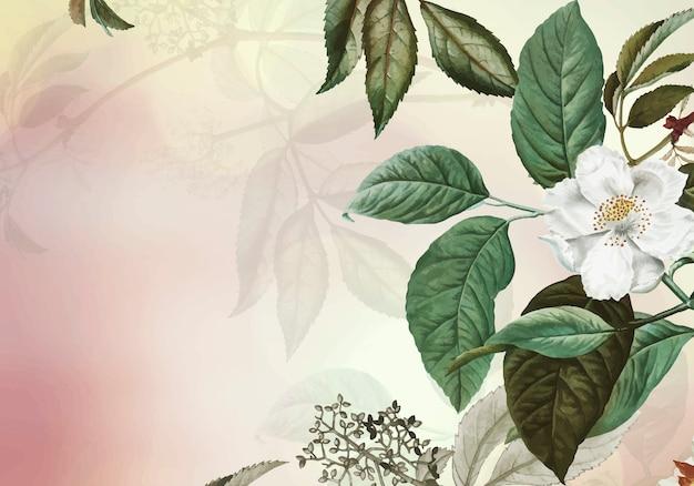 Fond floral vert