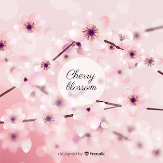 Fond flou de fleurs de cerisier