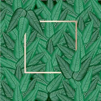 Fond de forêt avec cadre