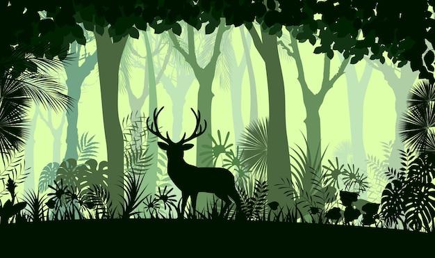 Fond de la forêt avec des cerfs sauvages des arbres