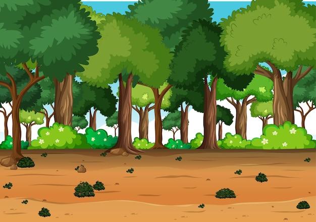Fond de forêt en plein air nature