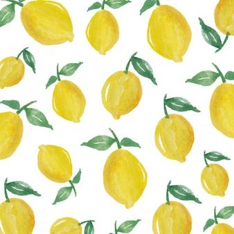 Fond de fruits citron aquarelle