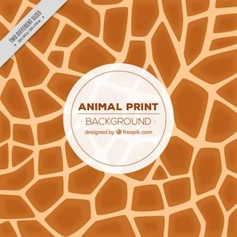 Fond giraffe avec des formes abstraites