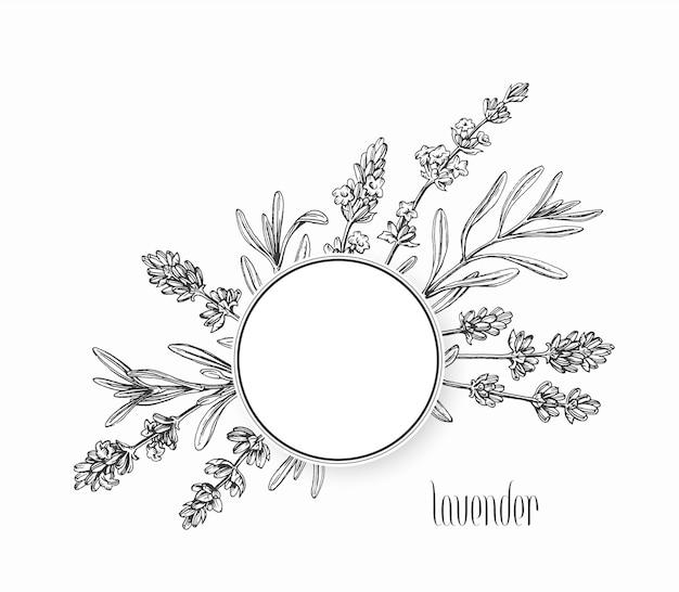 Fond graphique floral, cadre, feuilles dessinées à la main et fleurs de plante.