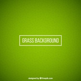 Fond d'herbe dans le style abstrait