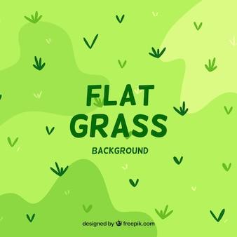 Fond d'herbe dans les tons verts