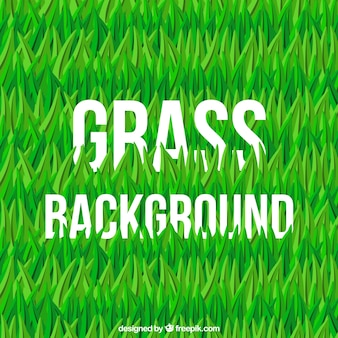 Fond d'herbe en design plat