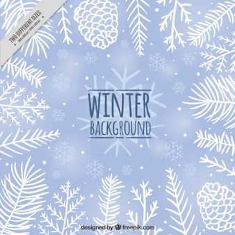 Fond d'hiver mignon avec des pommes de pin et des feuilles dessinés à la main