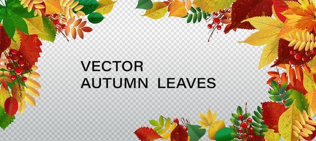Fond d'illustration vectorielle abstraite avec la chute des feuilles d'automne. eps10.