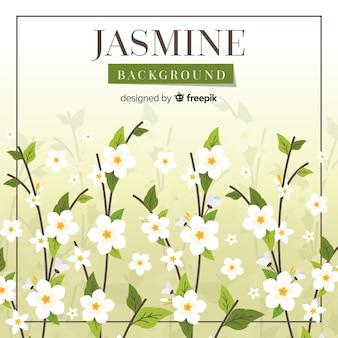 Fond de jasmin