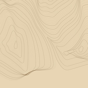 Fond de lignes de contour de carte abstraite marron