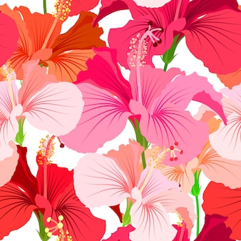 Fond magnifique motif floral sans soudure. motif de fleurs tropicales. fleur d'hibiscus de