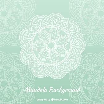 Fond de mandala vert élégant