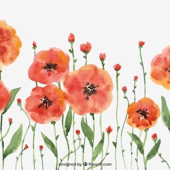 Fond moderne avec des fleurs d'aquarelle