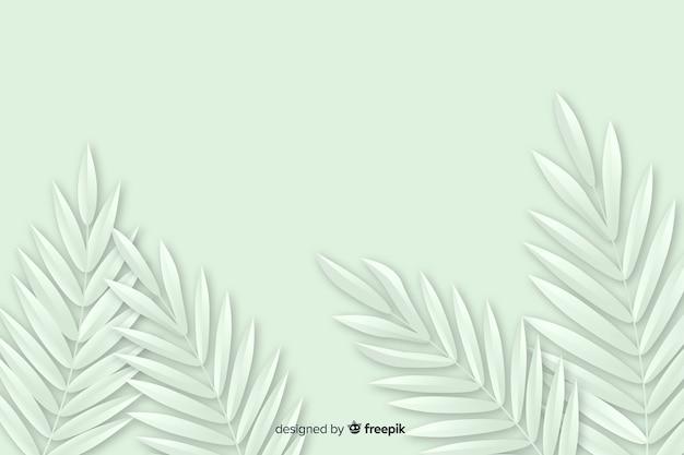 Fond monochrome avec plante