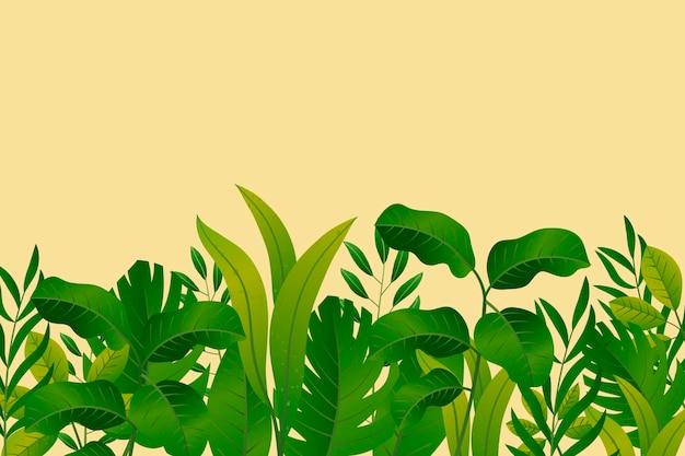 Fond mural tropical avec un espace vide
