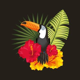 Fond noir tropical