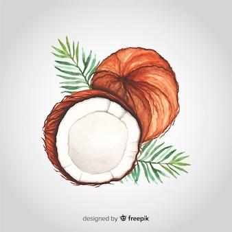 Fond de noix de coco aquarelle dessiné à la main