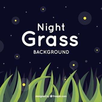 Fond de nuit avec de l'herbe et des formes décoratives brillantes