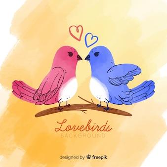 Fond d'oiseaux d'amour
