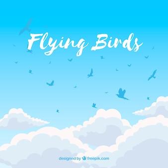 Fond avec des oiseaux au-dessus des nuages