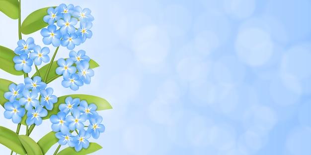 Fond avec l'oublie pas de fleurs et de feuilles vertes.